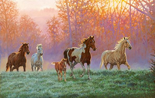 Morning Sun 1000 pc Jigsaw Puzzle