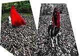 AKAKING's Costume Full Length Red Hooded Cape
