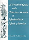 A Practical Guide to the Marine Animals of Northeastern North America 9780813523989