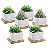 Decorative Small White Square Ceramic Succulent Planter Pot with Removable Bamboo Draining Tray, Set of 6