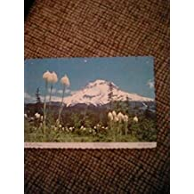 Volcanos and mountains  postcards: my collections