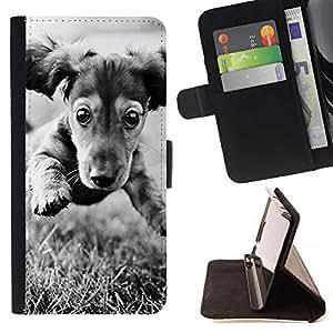 Momo Phone Case / Flip Funda de Cuero Case Cover - Dachshund Doxie del perro de perrito Negro Blanco; - Sony Xperia Style T3