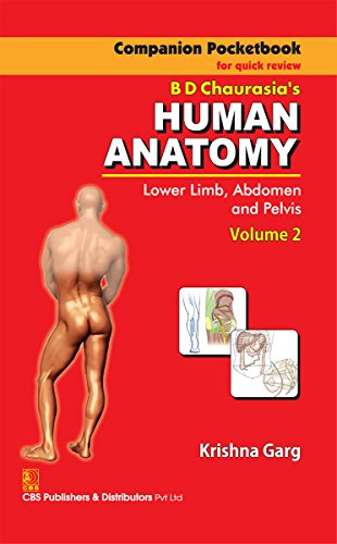 Amazon Human Anatomy Lower Limb Abdomen And Pelvis Volume 2
