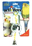 JW Pet Company Activitoy Disco Ball Small Bird Toy, Colors Vary, My Pet Supplies