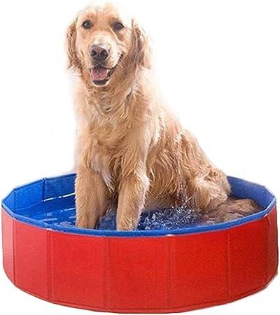 Piscina Perros Piscina para Perros Plegable, Bañera para Cachorros para Mascotas, Ducha para Niños, Perros, Gatos Y Niños en Interiores, Exteriores, Rojo (Size : 60×20 cm(D 23.6× H 7.9 in)): Amazon.es: Hogar