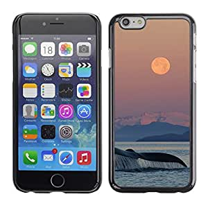 Plastic Shell Protective Case Cover || Apple iPhone 6 Plus 5.5 || Nature Sea Ocean Nature @XPTECH