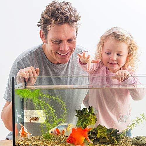 Acuario Plato Alimentador de Camarones Tanque de Peces de Vidrio Cuencos de Alimentación  Bandeja Reptiles Flotantes 4