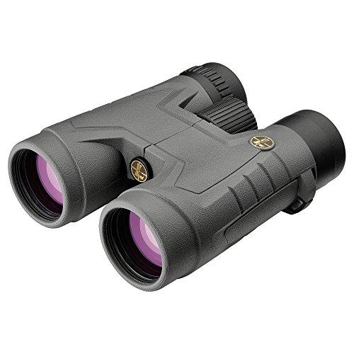 Leupold BX-2 Acadia 10x42mm Roof Prism Binoculars (Shadow Grey)