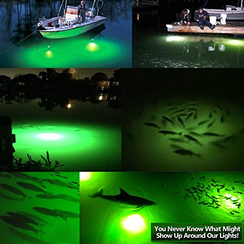 Buy Goture 12V IP68 High-power LED Fully Submersible Night