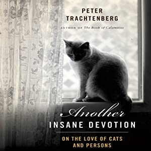 Another Insane Devotion Audiobook