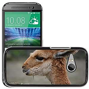 Super Stella Slim PC Hard Case Cover Skin Armor Shell Protection // M00148653 The Vicu?¡Àa Animal Mammal // HTC One Mini 2 / M8 MINI / (Not Fits M8)