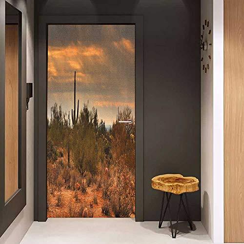(Door Sticker Mural Saguaro Dramatic Shady Desert View with a Storm Cloud Approaching Western Arizona Photo WallStickers W23.6 x H78.7 Orange Green)