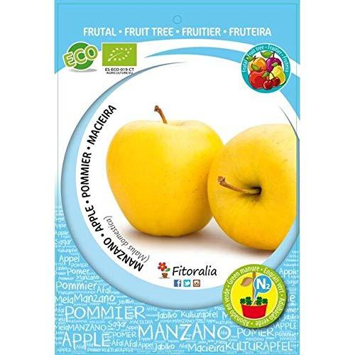 Manzano golden ecol/ógico