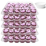 Upper Midland Products 24 Compartment Mini Cupcake Containers, Set of 5 Disposable Plastic High Dome Lid Cupcake Boxes for Transporting Small Cupcakes with Tall Icing