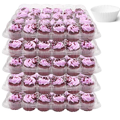 Mini Cupcake Box (24 Compartment Mini Cupcake Containers, Set of 5 Disposable Plastic High Dome Lid Cupcake Boxes for Transporting Small Cupcakes with Tall)