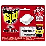 Raid Ant Bait III, 4 count