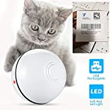 2020 Cat Toys Rechargeable Ball,Interactive Wicked Rolling,Newest Upgraded,Indoor Cat Entertainment Exercise Ball, for Kitten Kitty Only