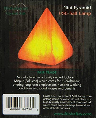 The Salt Lamp Store