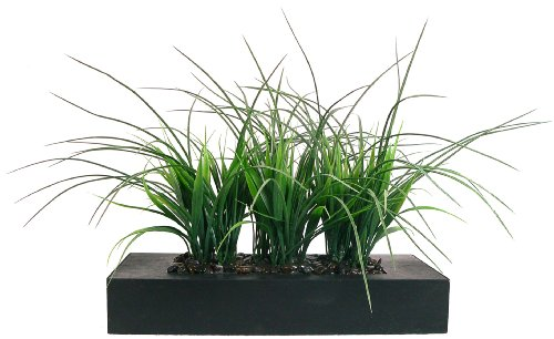 (Laura Ashley Green Grass in Contemporary Wood Planter)