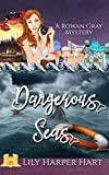 Dangerous Seas (A Rowan Gray Mystery Book 7)