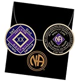 20 Year Blue and Purple NA Medallion Official Narcotics Anonymous Chip XX