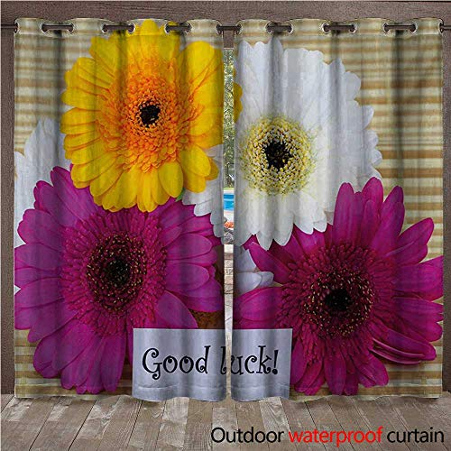 Balloons Daisy Gerbera (WilliamsDecor Going Away Party 0utdoor Curtains for Patio Waterproof Good Luck Note Colorful Gerbera Daisies Botanical Composition Art Print W84 x L96(214cm x 245cm))