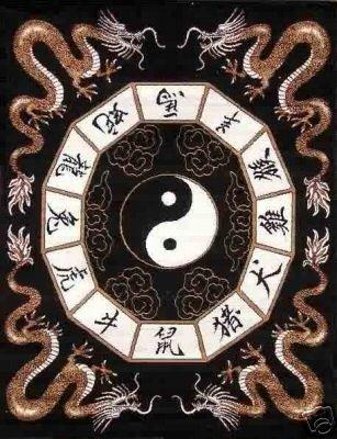Asian Dragon Yin Yang Polar Fleece Throw Blanket