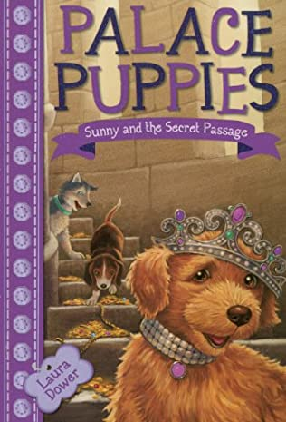 book cover of Sunny and the Secret Passage