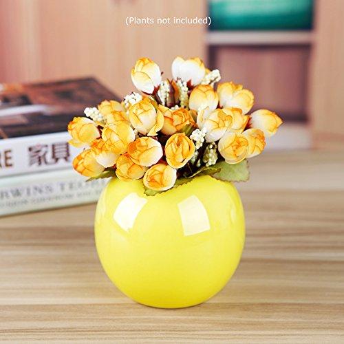 Guo's Cute Colored Ceramic Decorative Vases Bud Vase Plants Succulent Planter Pots Various 7 Colors (One Yellow) (Accents Ceramic Vase)