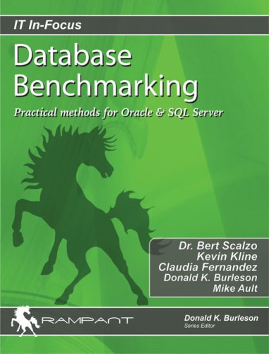 Database Benchmarking: Practical Methods for Oracle & SQL Server (IT In-Focus series)