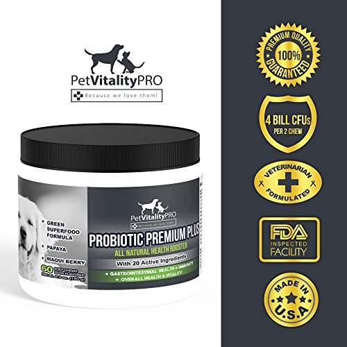 Probiotics for Dogs by using healthy Probiotics