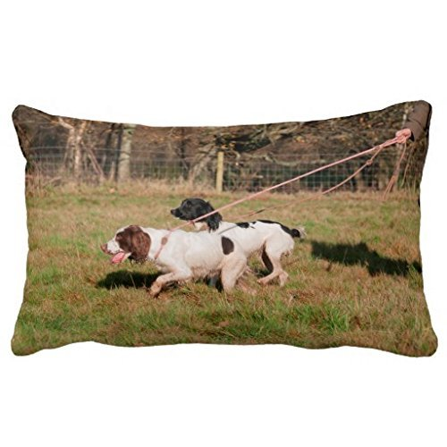 pillow-cushion-shop-a-puppy-with-master-liu-creative-personalized-pillowcase-cover-cushion-cover-16x