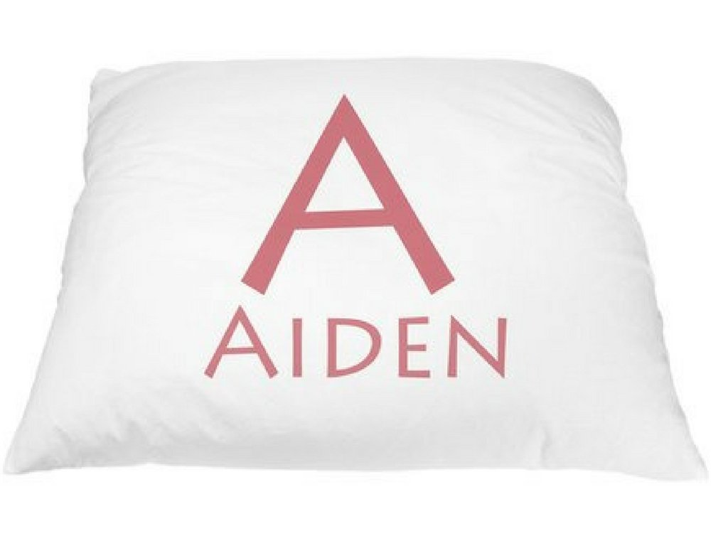 Personalized Kid's Font Pillowcase Microfiber Polyester Standard 20 by 30 Inches, Monogrammed Pillowcases, Personalized Monogram, Custom Pillow Cases, Name Pillows, Decorative Pillows for Girls by Pillows2