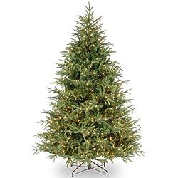 "National Tree 7.5 Foot ""Feel Real"" Frasier Grande Tree with 1000 Clear Lights, Hinged (PEFG3-308-75)"