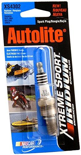 autolite-xs4302dp-xtreme-sport-iridium-powersports-spark-plug