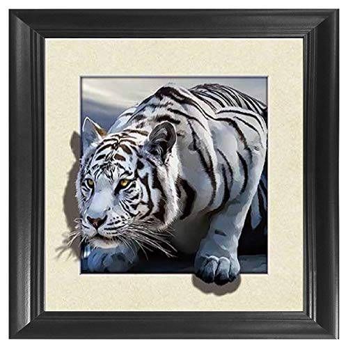 (White Snow Tiger 5D / 3D Poster Wall Art Decor Framed Print | 18.5x18.5 | Lenticular Posters & Pictures | Memorabilia Gifts for Guys & Girls Bedroom | Wild Black & White Jungle Cat Home Decorations)