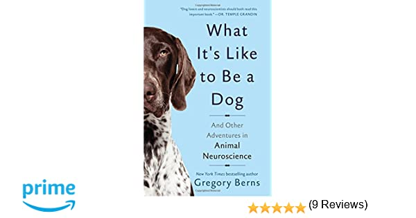 one good dog book reviews