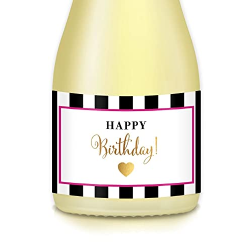 Gift Ideas For Adult Womans Surprise Birthday Party Decorations Set Of 20 Mini Champagne Or Wine Bottle Labels Celebrating Best Friend Roommate Wife