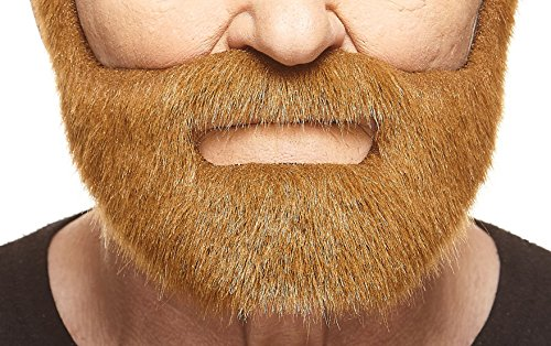 [Nobleman chestnut beard] (Mustaches And Beards)