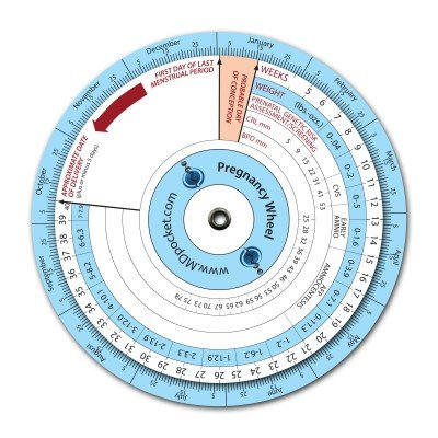 photo about Pregnancy Wheel Printable named : BMI Calculator Wheel: Health and fitness Person Treatment