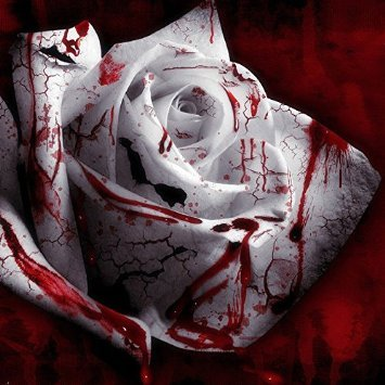 LOSS PROMOTION SALE! 150 Seed Rarest White Blood Rose Plant Flower Seeds Flower Garden Asaka Rare True Blood Rose seed