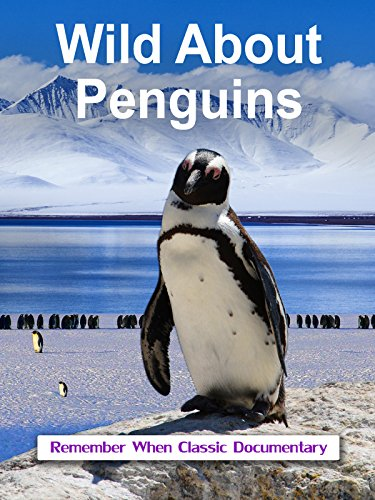 Wild About - Penguins
