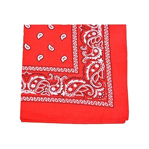 Mechaly Paisley 100% Cotton Bandanas (Red)
