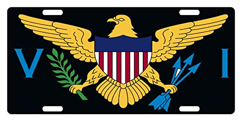 (Fast Service Designs US VIRGIN ISLAND Flag License Plate NATIONAL Emblem Black Version)