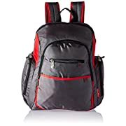 Fisher-Price Rip Stop Diaper Bag Backpack, Grey & Red