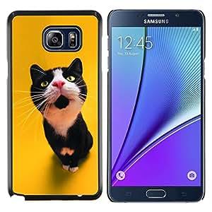 YiPhone /// Prima de resorte delgada de la cubierta del caso de Shell Armor - El gato curioso - Samsung Galaxy Note 5 5th N9200