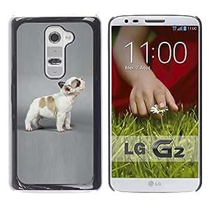 Vortex Accessory Carcasa Funda PARA LG G2 For - French Bulldog Puppy Grey Dog