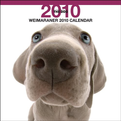 Weimaraner 2010 Calendar (The Dog Artist Collection) (Multilingual Edition)