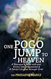 Product review for ONE POGO JUMP TO HEAVEN