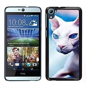 EJOY---Cubierta de la caja de protección para la piel dura ** HTC Desire D826 ** --Peterbald sin pelo del gato Sphynx Donskoy